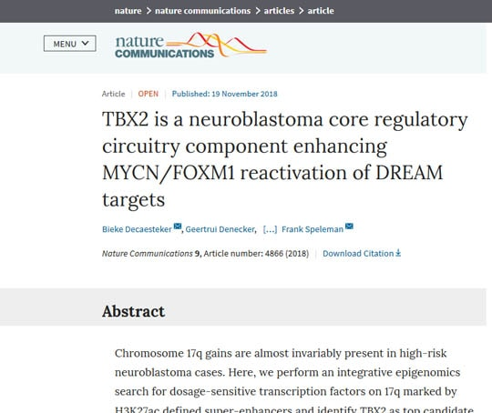TBX2 is a neuroblastoma core regulatory circuitry component enhancing MYCN/FOXM1 reactivation of DREAM targets